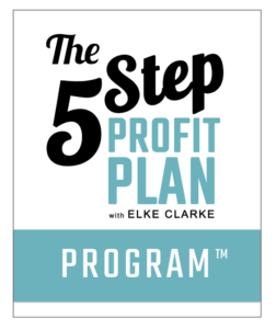 5 Step Profit Plan Program